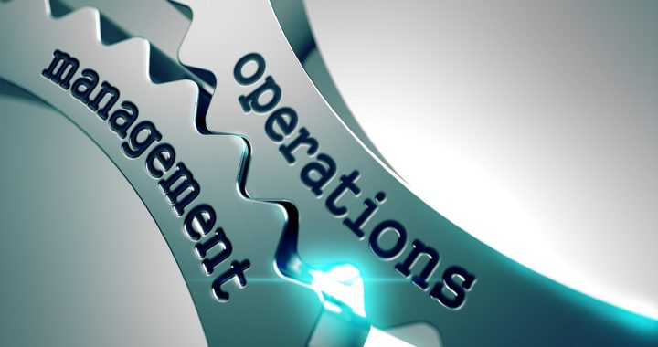 What can a consultant do for you and the types of operational consultants you can avail of?